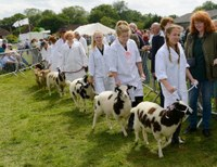 Cranleigh Show up next for MJ Abbott's sales team