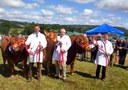 Honiton Show up first in busy August for MJ Abbott