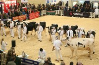 MJ Abbott exhibiting at the Dairy Show 2013