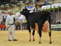 MJ Abbott exhibiting at the Dairy Show 2015