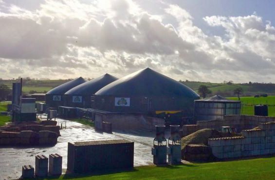 Powered by poo: Wyke Farm enjoys biogas boom