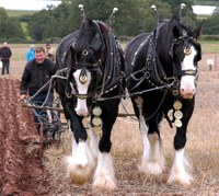 Visit MJ Abbott at the British National Ploughing Championships