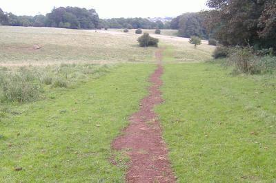 Post installation across fields