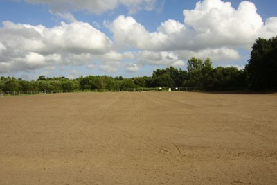 Seeded pitch