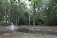 Completed pond with aerator operating