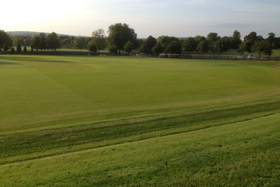 Cricket outfield following initial grow-in by Harrow School
