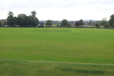 Cricket square and surrounds during grow-in by Harrow School