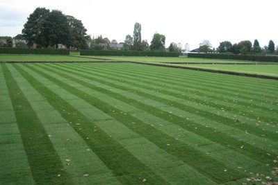 Completed bowling green