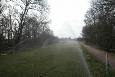 Sprinklers operating on a tee
