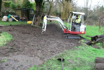Stripping the site