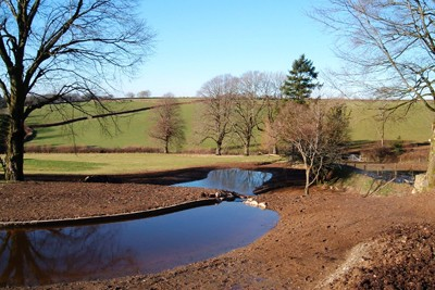 View of new ponds from upper tier