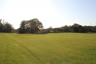 Established junior pitch