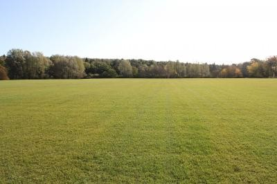 Established pitch areas