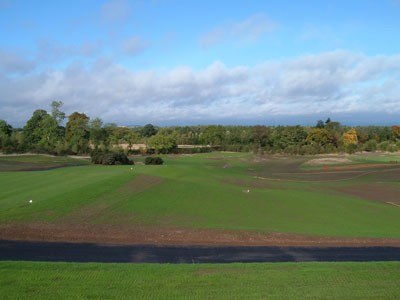 Seed germination on the 16th Hole