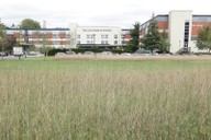 View of front of hotel over new meadow