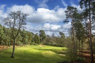 The 9th Hole on the Marquess' Course, Woburn