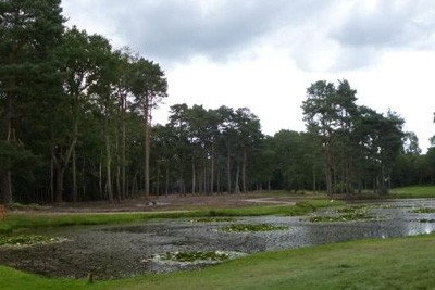 Site of new 16th Hole at Woking Golf Club